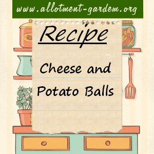 cheese and potato balls