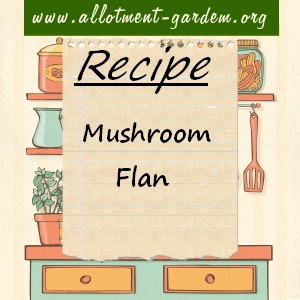 mushroom flan