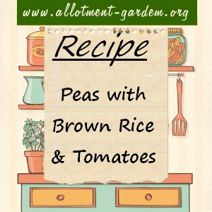 peas with brown rice and tomatoes