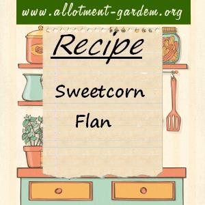 sweetcorn flan