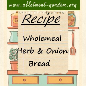wholemeal herb and onion bread