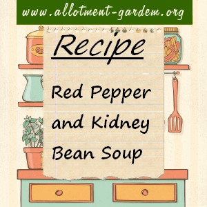 Red Pepper and Kidney Bean Soup Recipe