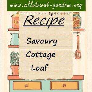 savoury cottage loaf