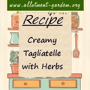 creamy tagliatelle with herbs