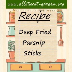 deep fried parsnip sticks
