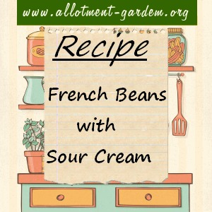 french beans with sour cream