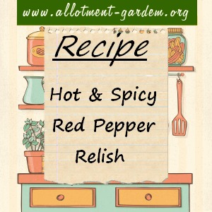 hot and spicy red pepper relish