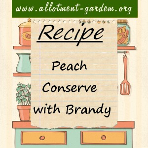 peach conserve with brandy