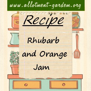 rhubarb and orange jam