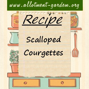 scalloped courgettes
