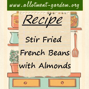 stir-fried french beans with almonds