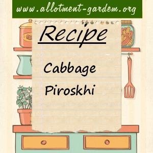 cabbage piroskhi