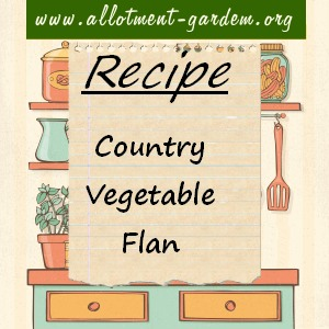 country vegetable flan