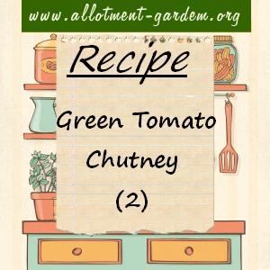 green tomato chutney (2)