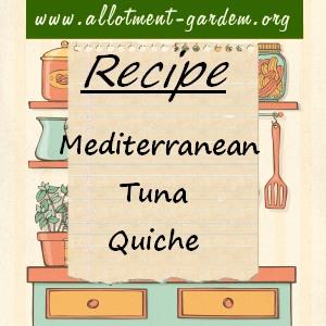 mediterranean tuna quiche