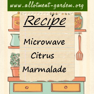 microwave citrus marmalade