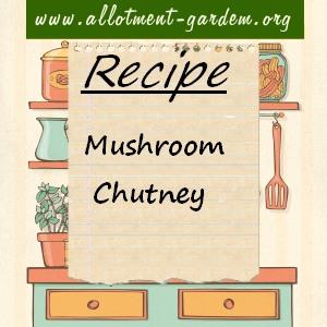 mushroom chutney