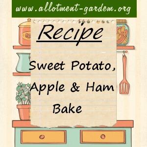 sweet potato, apple and ham bake