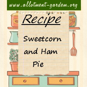sweetcorn and ham pie