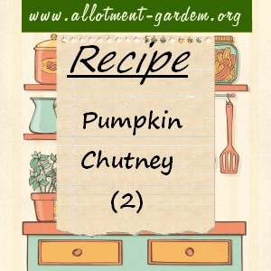 pumpkin chutney - 2