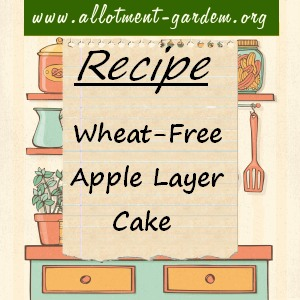 wheat-free apple layer cake
