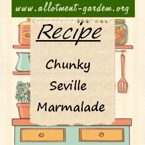 chunky seville marmalade