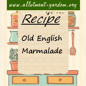 old english marmalade