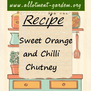 sweet orange and chilli chutney