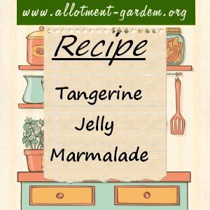 tangerine jelly marmalade