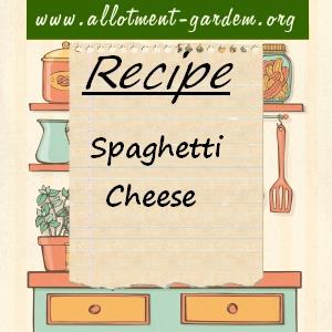 spaghetti cheese