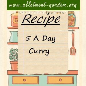 5 A Day Curry Recipe