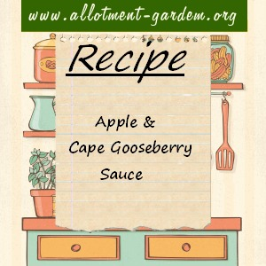apple and cape gooseberry sauce