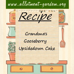 Grandma's Gooseberry Upside-down Cake
