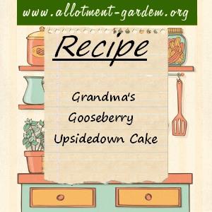Grandma's Gooseberry Upside-down Cake