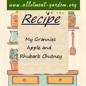 my grannies apple and rhubarb chutney