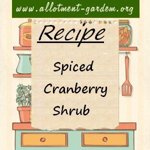 spiced cranberry shrub