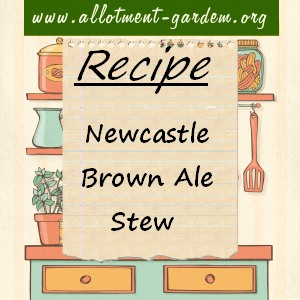 brown ale stew
