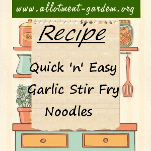 garlic stir fry noodles