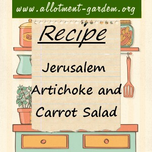Jerusalem Artichoke and Carrot Salad Recipe