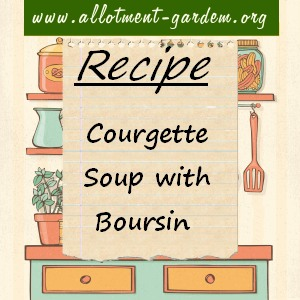 courgette soup with boursin