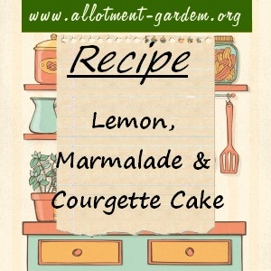 Lemon, Marmalade and Courgette Cake