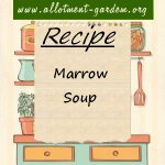 Marrow Soup Recipe