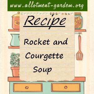 Rocket and Courgette Soup