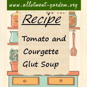 tomato and courgette