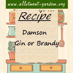 damson gin or brandy