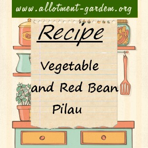 Vegetable and Red Bean Pilau