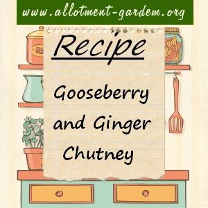 Gooseberry and Ginger Chutney