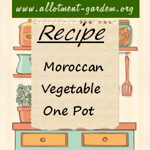 moroccan veggie