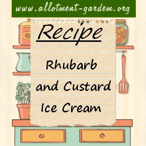 Rhubarb and Custard Ice Cream