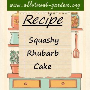 Squashy Rhubarb Cake